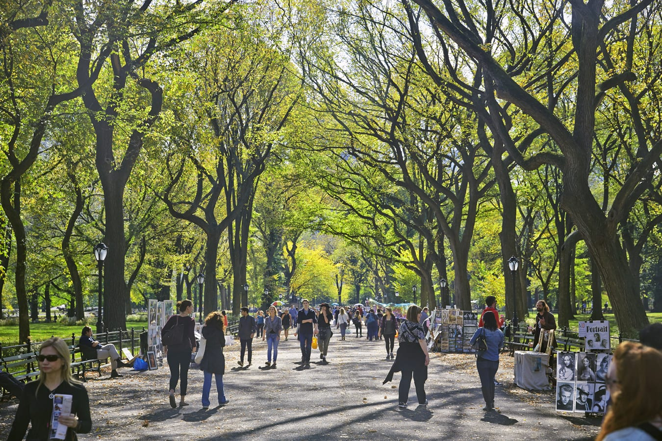 Wide pathway in Central Park in the morning. Many different groups of people are walking down the concrete path.